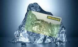 rebate freeze